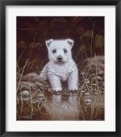 Framed Puppy 1
