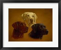 Framed Portrait of Three