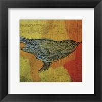 Warbler 1 Framed Print