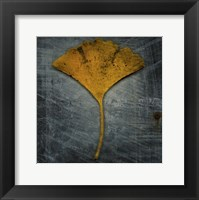 Gingko 2 Framed Print