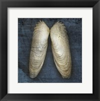 Angel Wings Framed Print