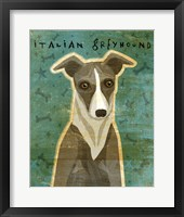 Framed Italian Greyhound - White and Grey