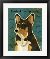 Framed Pembroke Welsh Corgi - Tri-Color