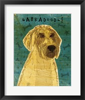 Framed Yellow Labradoodle
