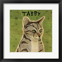 Tabby (grey) Framed Print