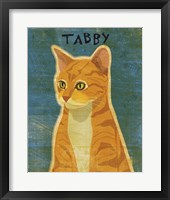 Tabby (orange) Framed Print