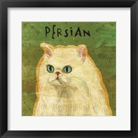 Persian Framed Print
