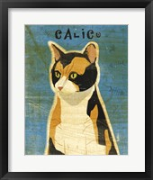Calico Framed Print