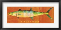 King Mackerel Framed Print