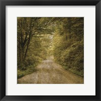 Flannery Fork Road No. 1 Framed Print