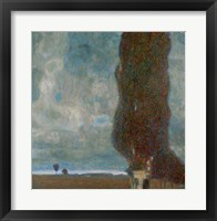 Framed Large Poplar Tree (II), 1903