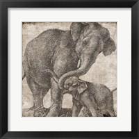 Elephant 2 Framed Print