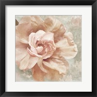 Framed Petals Impasto I