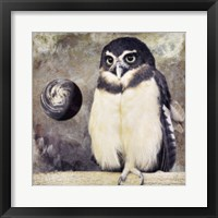 Moon Owl Framed Print