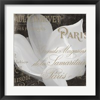 Fleurs Blanc II Framed Print