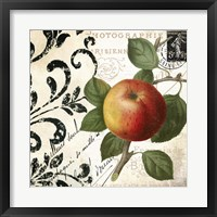 Les Fruits Jardin IV Framed Print