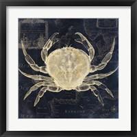 Maritime Blues III Framed Print