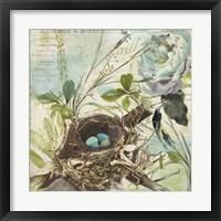 Nesting II Framed Print