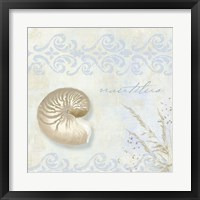 She Sells Seashells I Framed Print