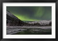 Framed Aurora Borealis over Annie Lake, Yukon, Canada
