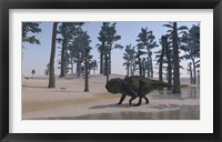 Udanoceratops Walking Along Water Framed Print