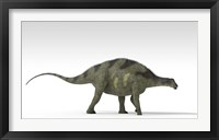 Brachytrachelopan Dinosaur Framed Print