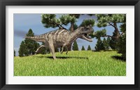Framed Ceratosaurus