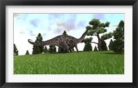 Framed Dicraeosaurus