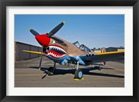 Framed Curtiss P-40E Warhawk