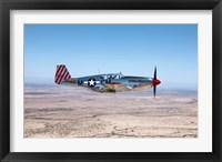 Framed TP-51C Mustang
