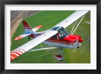 Framed Champion Aircraft Citabria