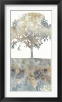 Water Tree I Framed Print