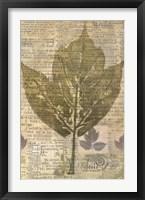Harvest III Framed Print