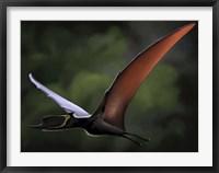 Framed Dsungaripterus