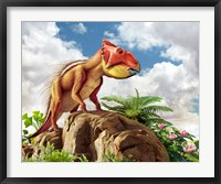Framed Leptoceratops
