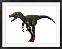 Framed Proceratosaurus Dinosaur