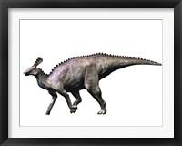Tsintaosaurus Dinosaur Framed Print