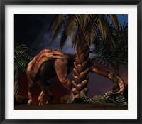 Framed Plateosaurus