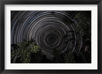 Framed Southern Sky Star Trails