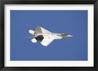 Framed F-22 Raptor