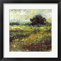 Harmony of Color II Framed Print