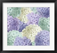 Hortensia Groundless Cool Tones Framed Print