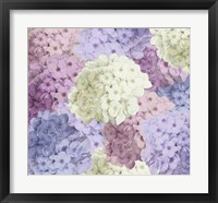 Hortensia Groundless Warm Tones Framed Print