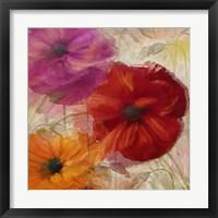 Penchant For Poppies I Framed Print