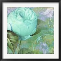 Aqua Rose I Framed Print