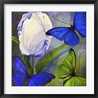 Morphos One Framed Print