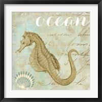 Turquoise Beach III Framed Print