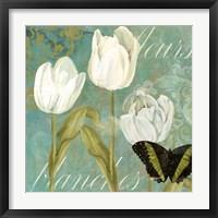 White Tulips I Framed Print