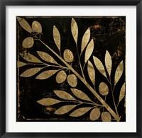 Bellissima I Framed Print