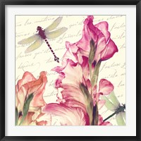 Dragonfly Morning I Framed Print